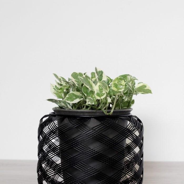 planter-6